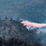 Israel logra controlar incendios forestales tras 52 horas de lucha