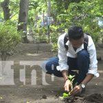 Realizan jornada de reforestación en Altagracia, Ometepe