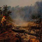 Bombero trabaja para sofocar un incendio forestal