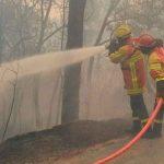 Bomberos combaten incendios en un monte de pino en Grecia