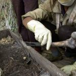 Descubren amantes abrazados en fosa de 1.500 años de antigüedad en China