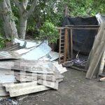 Foto: Gobierno envía ayuda a familias afectadas por caída de árbol en Ticuantepe / TN8
