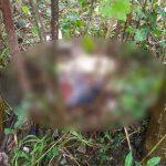 Hallan a mujer decapitada en el norte de Honduras