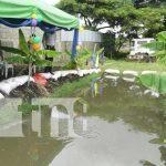 Estelí cuenta con tres nuevos estanques para peces