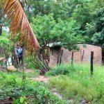 Masacre en Comayagua, Honduras deja a cinco personas muertas