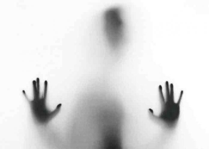 Supuesto fantasma ataca a un vigilante de Armenia, Colombia (video)