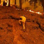 Foto: Dixie se convierte en el mayor incendio forestal activo en EE.UU. / Reuters