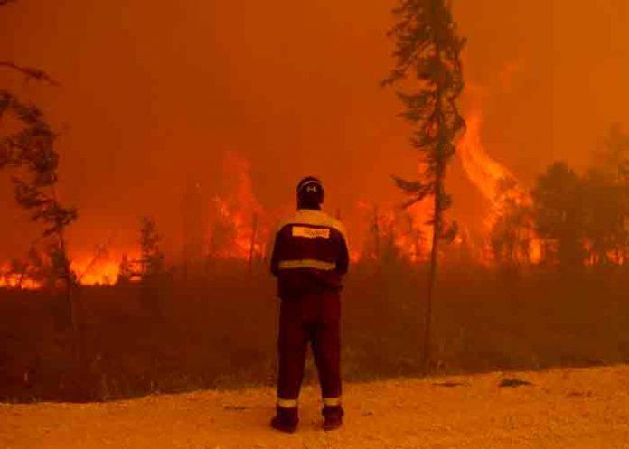 Siberia declara emergencia interregional por incendios forestales