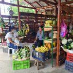 Mercadito Campesino ubicado en Las Colinas, Managua