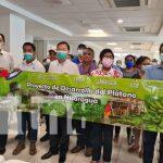 Nicaragua fortalece proyecto para tratamiento de producción de plátano