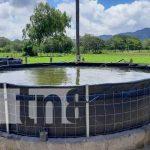 Inauguración de estanques de peces tilapia en Jinotega