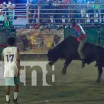 Montas de toros en Nicaragua
