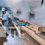 Lucha antiepidémica en Managua con fumigación y abatización