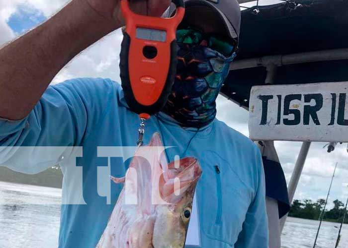 nicaragua, rio san juan , torneo, pesca,
