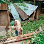 Árbol cae sobre dos viviendas debido a las lluvias y los fuertes vientos en Matiguás