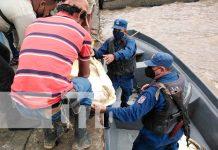 Distrito Naval Caribe regreso a cuatro tortugas a su hábitat natural