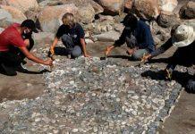 """Hallan en Turquía """"el antepasado"""" de los mosaicos mediterráneos"""