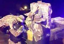 Policía de Argentina decomisa más de cuatro toneladas de marihuana