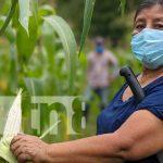 Protagonista del MEFCCA en Telpaneca impulsa economía familiar