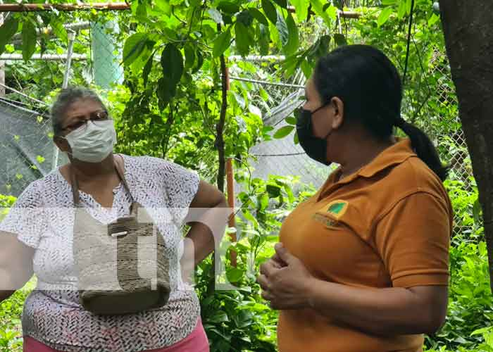 Visita al Arboretum de Managua con adultos mayores