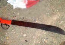 Aberrante crimen: Nieto mató a machetazos a su abuela de 65 años