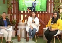Conferencia del MEFCCA sobre diseño e innovación con el bambú