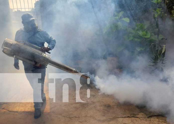 Jornada de fumigación y lucha antiepidémica en Managua