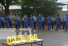 Capturan en León a 38 personas vinculadas a diferentes delitos