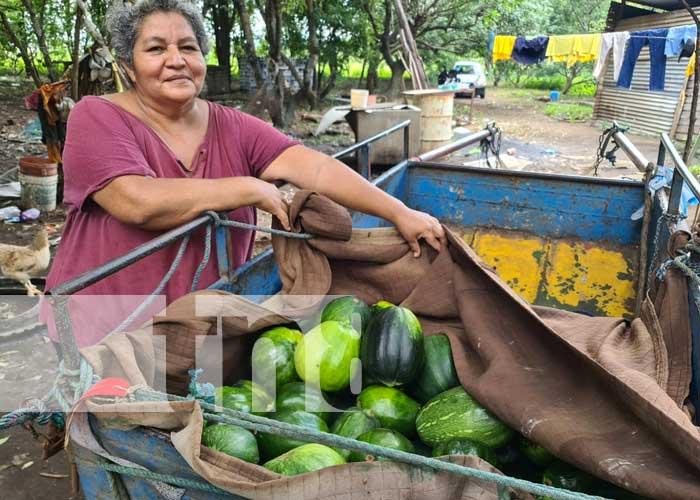 Programa Patio Saludable en Managua