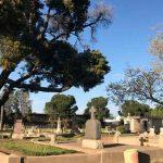 Descubre cabello saliendo de una tumba de más de 100 años