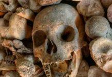 Tiktoker desata polémica por vender huesos humanos incluidos cráneos de fetos